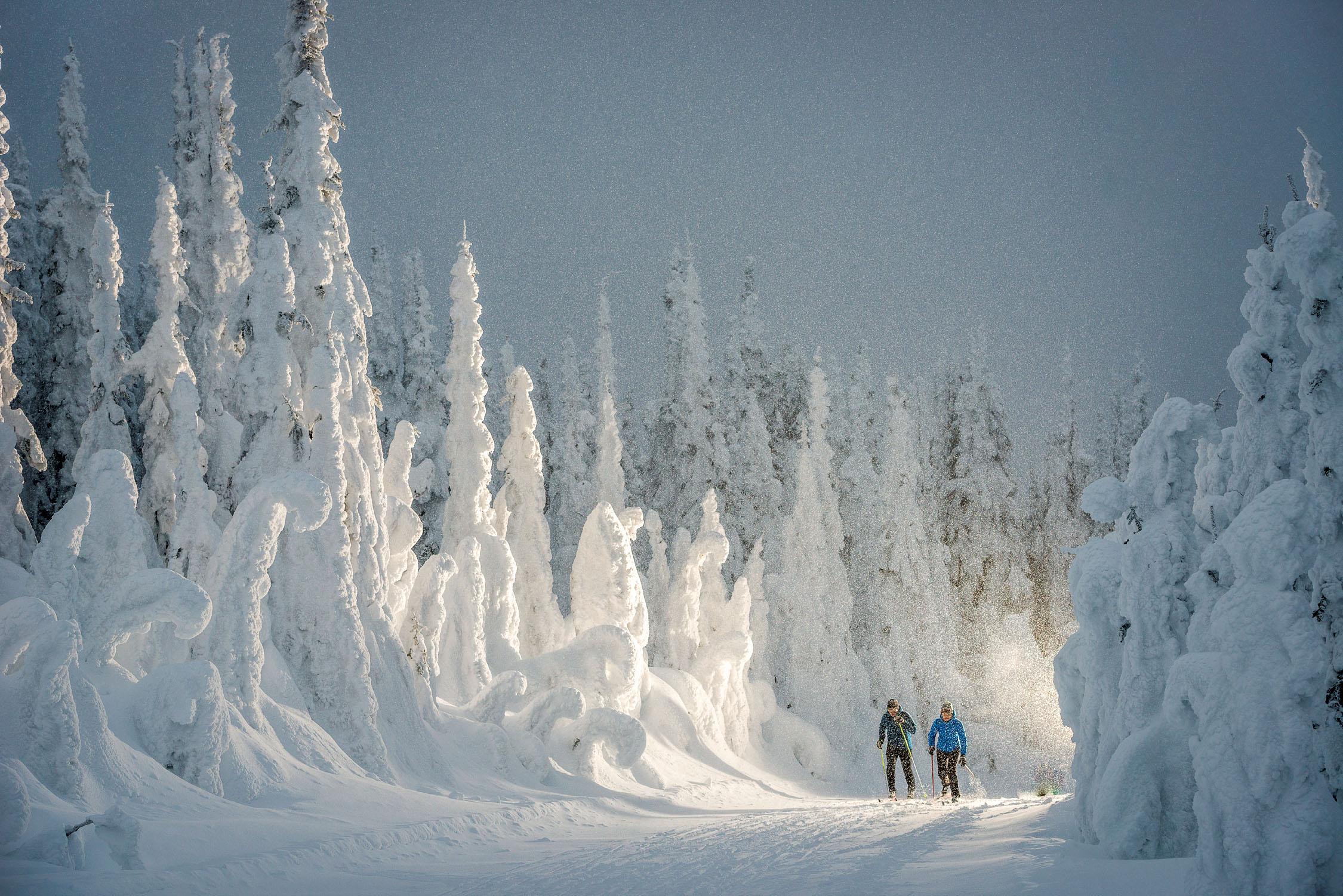 Cross-country skiing at SilverStar Mountain Resort