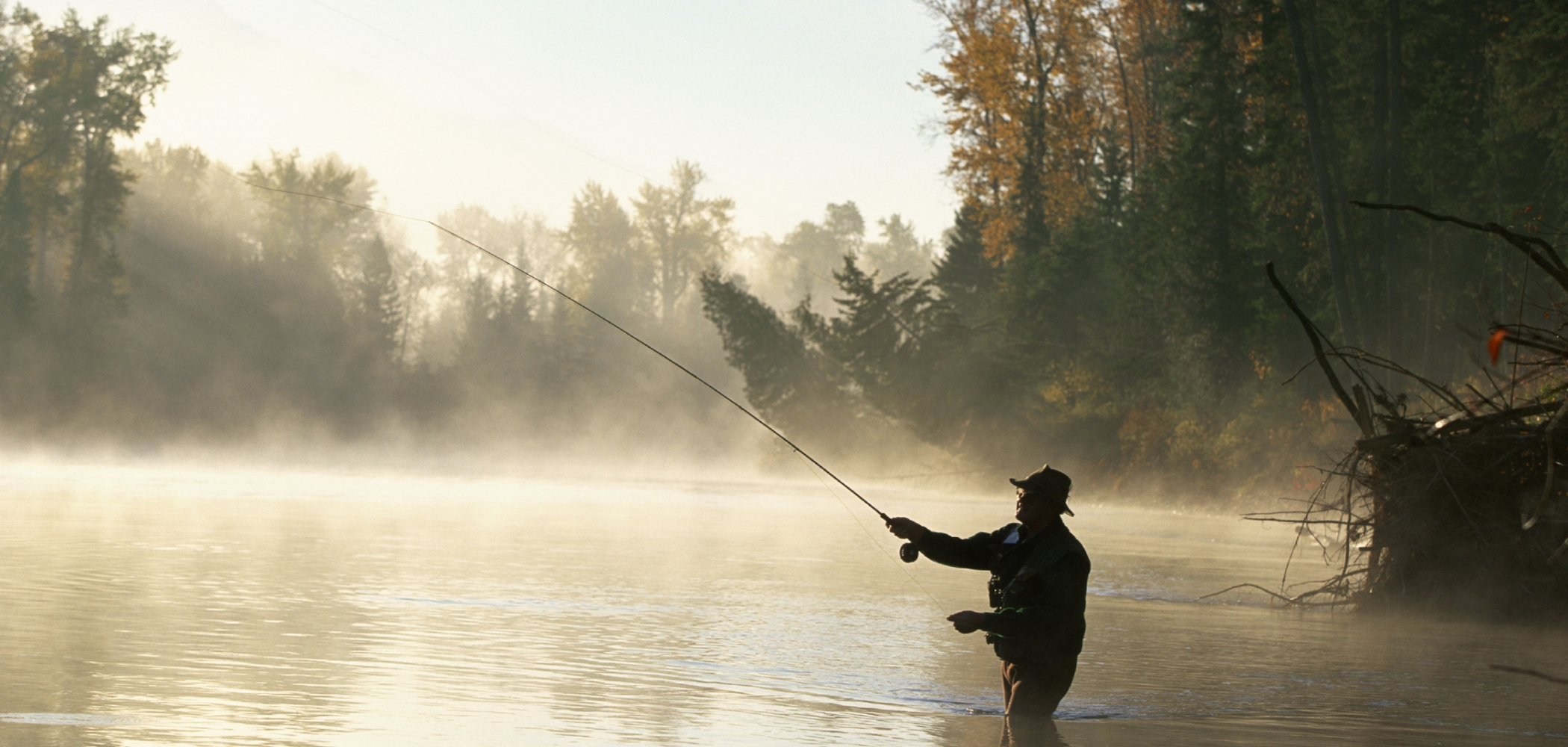 Man fly fishing in the mist on the Elk River near Fernie.