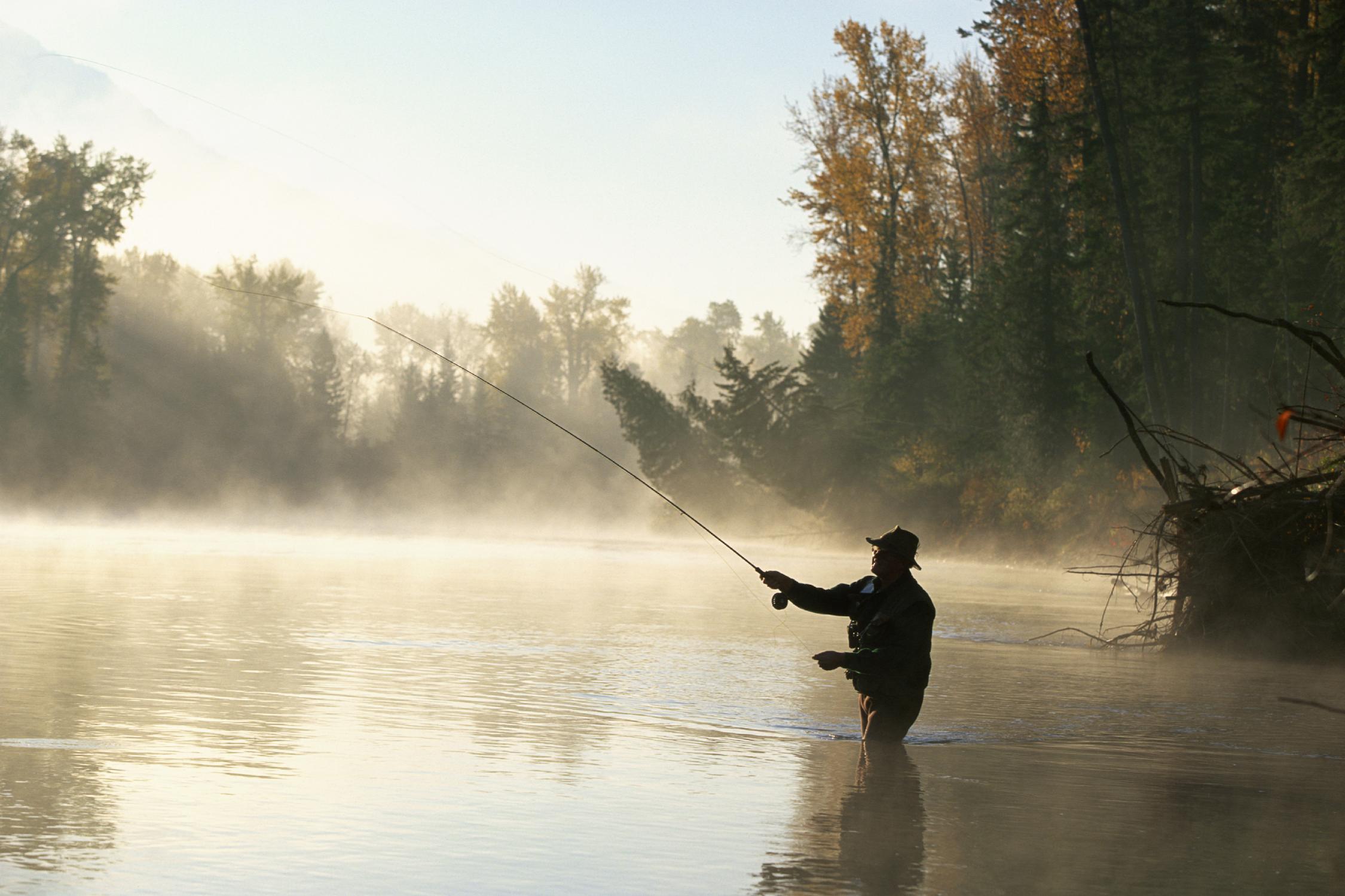 Man fly fishing in the mist on the Elk River near Fernie.