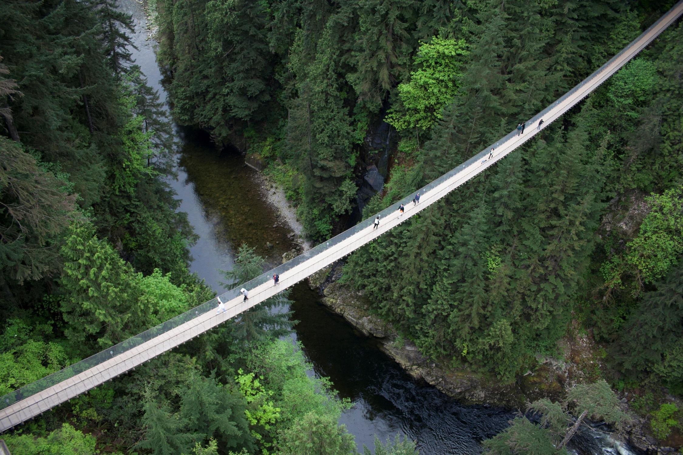 Capilano Suspension Bridge   Capilano Suspension Bridge