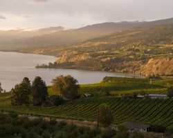Okanagan Lake and Naramata | Kari Medig